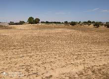قطعة أرض للسكن أو الزراعة