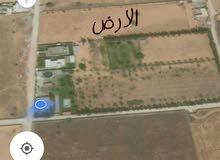 ارض للبيع خلة بن جابر بالقرب من جامع فاطمة الزهراء