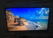 Sony 42 inch TV screen