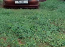Manual Maroon Opel 1999 for sale