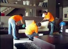 تنظيف مفروشات ومساكن ومكافحة الحشرات بدقه وأسعار خارج المنافسه.