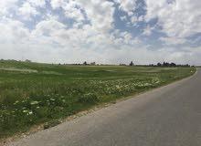 أرض في الاردن قرب المطار