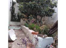 A fruitful house with garden in Azla,Morocco   for sale near to Azla Beach
