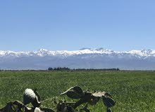 180 hectares for sale in Marrakech