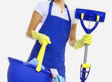شركة المصطفي لتوفير عمال النظافة اجانب/ مصريين