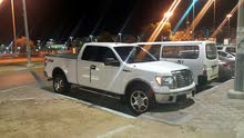 FORD F 150  2102