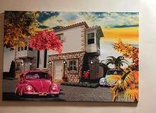 براويزو  لوحات فنية