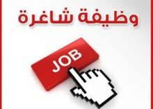 مطلوب موظف عماني حصرا للعمل في مكتبة في بركاء