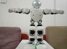 Humanroid Alpha 1P computer programable robot
