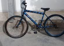 دراجة عادية رقم 26