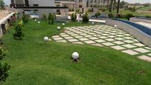 هنا تنفيذ اجمل الحدائق والمسطحات الخضراء والملاعب والشلالات وتشجير المزارع