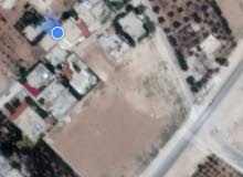 قريه ابو نصير مقابل مصنع الجير سابقاً