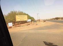 مخطط النخيل 2 شرق النيل شرق كبري سوبا بي 5 كيلو مكتمل الخدمات