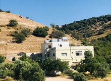 First Floor  apartment for rent with 4 rooms - Ajloun city I'bbeen