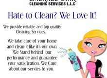 CLEANERS / MAIDS