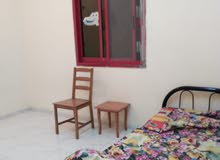 Room for Rent at Abu Shagara, Sharjah for Executive Batchelor