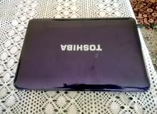 laptop toshiba purple