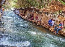 شقة f3 طابق 4 حي عدل وهران بئر الجير