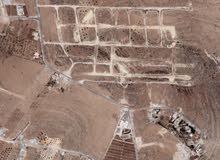 قطعة أرض للبيع في بيرين منطقة ام رمانه حوض الجبل قريبه من شفا بدران