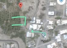 للبيع ارض زراعيه صحار الهمبار جنب مسجد الدباديب 1786 متر من المالك