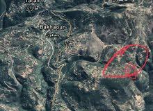 ارض بشمال لبنان قضاء الضنية محايده مطله على ساحل بسعر يناسب اي مشروع تجاري