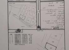 3 أراضي شبك على طريق عباسة والبريك
