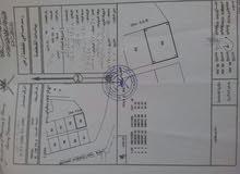 ارض للبيع الطو 3