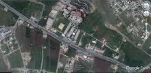 ارض 1300م للبيع في السرو قريبة من جامعة عمان الاهلية