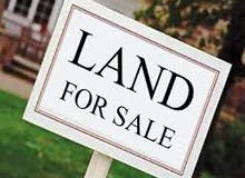 For sale investment land in Al Fisht sharjah price 3 million