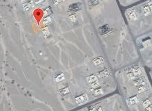 ارضين شبك في مرتفات نخل قريب جامع للبيع