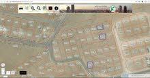 3 قطع اراضي للبيع في منطقة بيرين الزرقاء – شومر - الرحيل