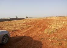 ارض للبيع بشارع بوابة الصاروخ ( الضبعي ) بالقرب من مصنع العين ثاني شارع علي اليسار بعد المصنع مباشرة