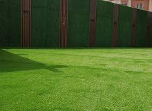 تنسيق الحدائق الداخليه والخارجيه وتوريد الثيل الصناعى والطبيعى والسور التركي