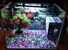 New aquarium for sale,price not negotiable.