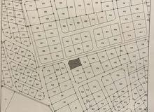 أرض سكنية للبيع اربد قرن الجاموس جنوب قصر العوادين
