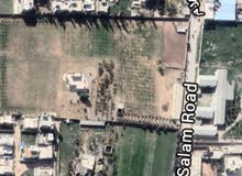 قطعة ارض للبيع - الهضبة الخضراء