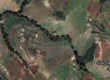 قطعة ارض للبيع في بني نصاف