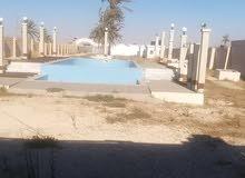هكتار علي بحر به 9 شاليهات مصور بالكامل به حوضين سباحة به مطبخ عائلي وشط خاص