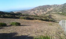 ارض سكنيه للبيع في موقع جميل جبلي قريبة من البحر