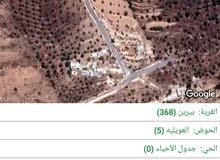 قطعة ارض في بيرين / العويلية مساحتها 4 ونص دونم بسعر مغري