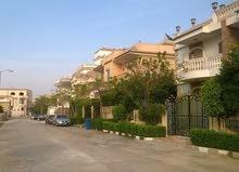 شقه للايجار في كمبوند الياسمين الشيخ زايد