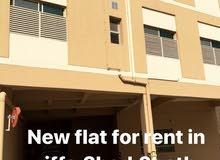 للإيجار شقة  جديدة في الرفاع الحجيات