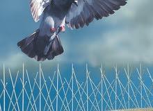 طارد الطيور والحمام 55174959