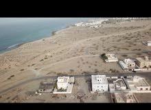 ارض قريبه من البحر في السيفه Land for sale near the sea in sifah