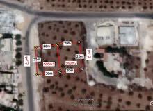 ارض في عمان قطعة في خربة السوق وجاوا حوض صهاة شموط المساحة 500 م2
