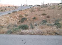 أرض للبيع مدرية اراضي الزرقاء مزرعة الرحيل موقع عايش (2) رقم اللوحة (2) رقم القط