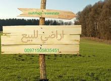 للبيع ارض سكنى استثمارى بالعامرة بسعر ممتاز بجانب جامعة الوطن