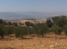 جرش قرية جبا مقابل ثغرة عصفور