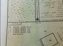 ارض للبيع سكنية 800م  في الدقم