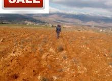 ارض للبيع قرب مفرق شعث _ جهة يونين لها طريق مباشر للطريق العام .الاتصال 03936869